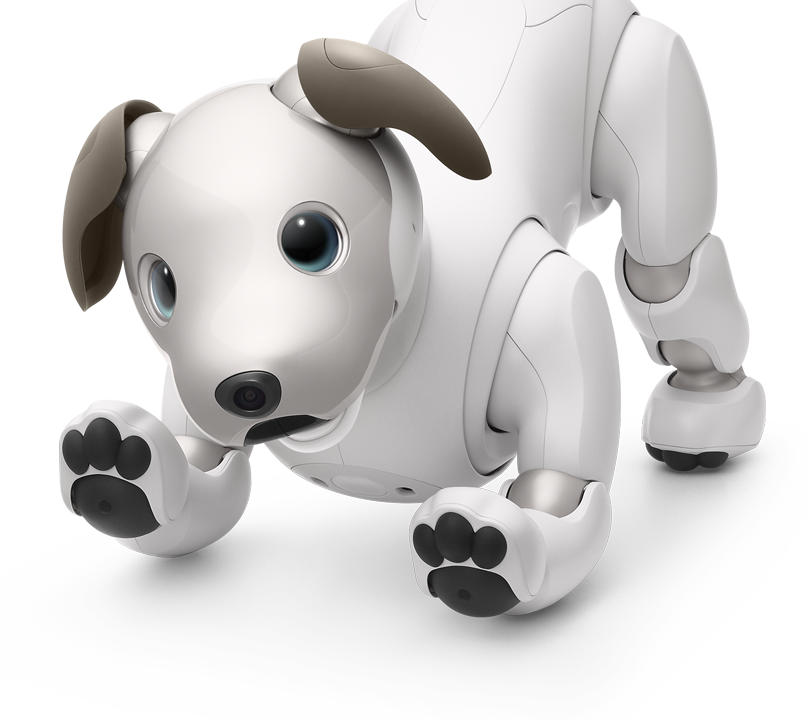 Sony Aibo Electric dog pet Collars CC-AIBOCOLLAR Camel F//S